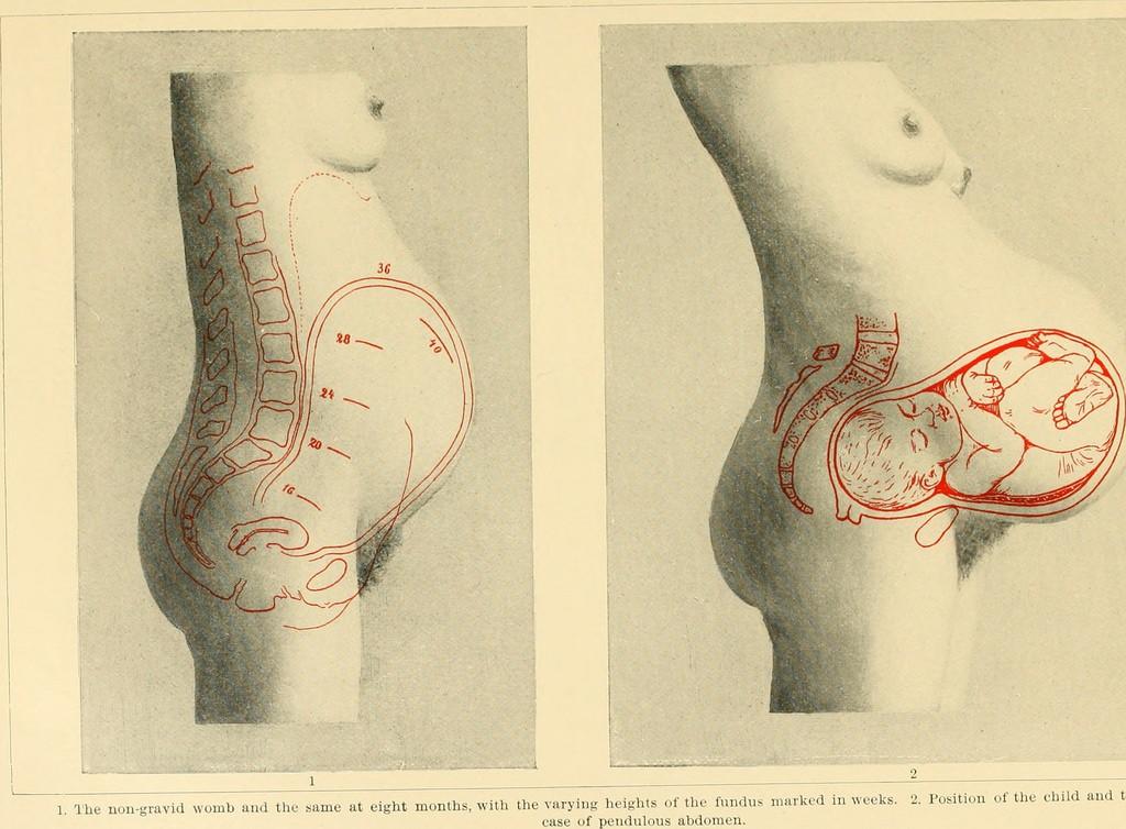 Pilates Embarazadas en Tenerife: guía de cambios en tu cuerpo